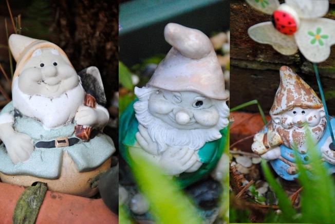 Gnome triptych
